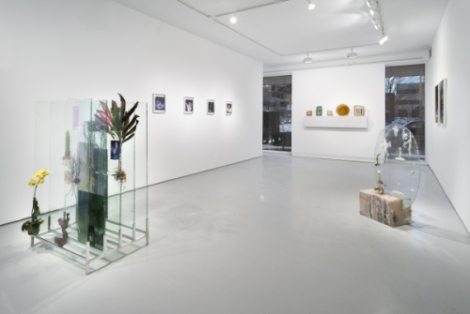 "Installation View, Heidi Norton ""to Threptikon"" Monique Meloche Gallery"